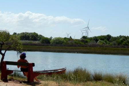 A orillas del arroyo Chuy