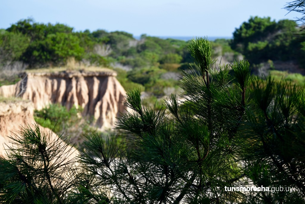 Cárcavas de Punta Rubia