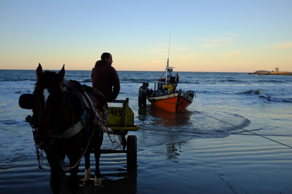 Salida del mar de las barcas de pesca artesanal - Foto: Leonardo Maiche