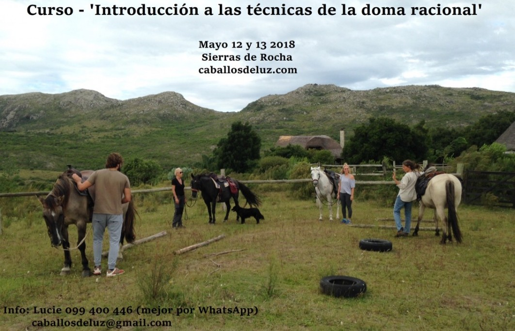 """Curso de """"Introducción a las técnicas de la doma racional"""" en las Sierras de Rocha"""