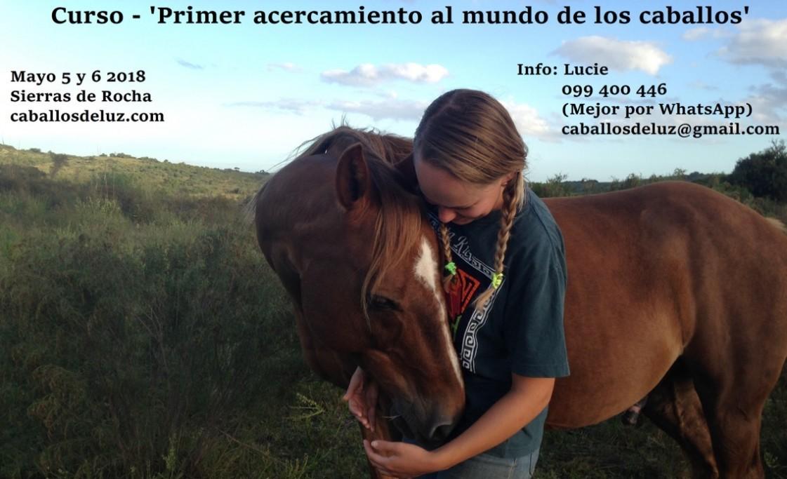"""Curso en las Sierras de Rocha: """"Acercamiento al mundo de los caballos"""""""