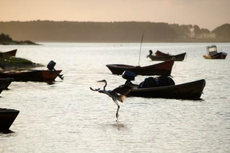 Fin de semana en la Laguna en La Paloma