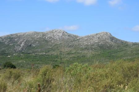 Tour a las Sierras de Rocha en La Paloma