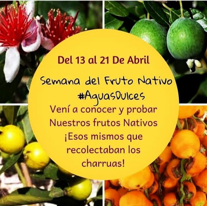 Aguas Dulces celebra su 1ª Semana del Fruto Nativo durante toda Semana de Turismo