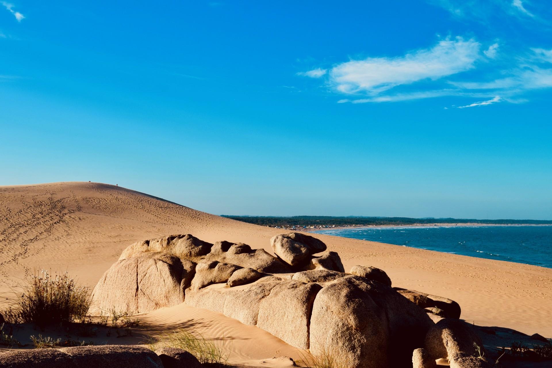 Tour guiado a Cabo Polonio y Barra de Valizas