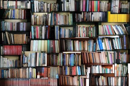 """Uruguay te leo"" - Feria del libro en Rocha"