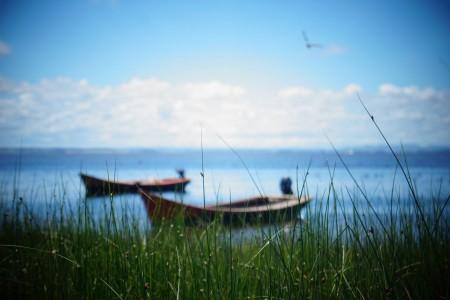 EnCanto a la Laguna 2020 en Rocha