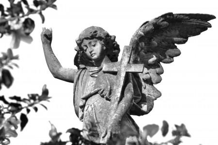 Paseo por el Cementerio en Rocha