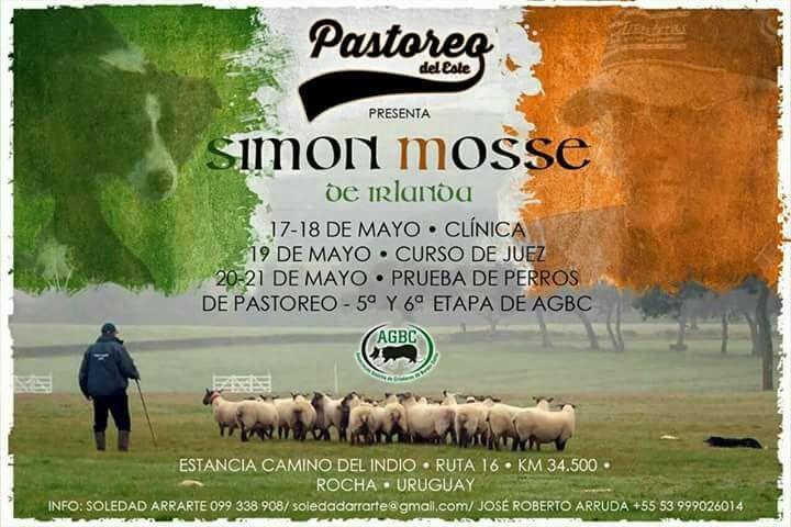 Simon Mosse de Irlanda en Rocha