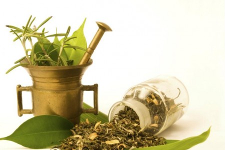 Reconocimiento de hierbas medicinales en La Pedrera