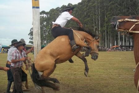 1er Festival Criollo en Lascano