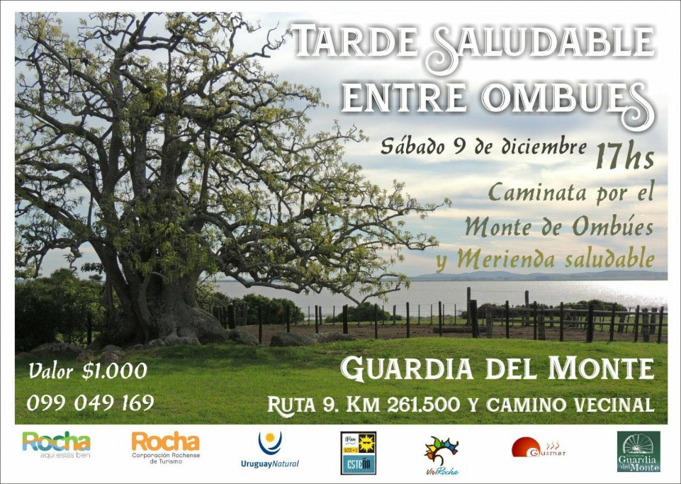 Tarde saludable entre ombúes con caminata y merienda en Estancia Guadia del Monte