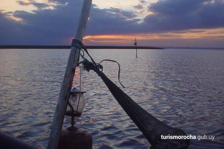 Zafra de pesca de camarón en Rocha, un actividad que involucra pescadores artesanales, cientos de luces sobre las aguas y miles de camarones
