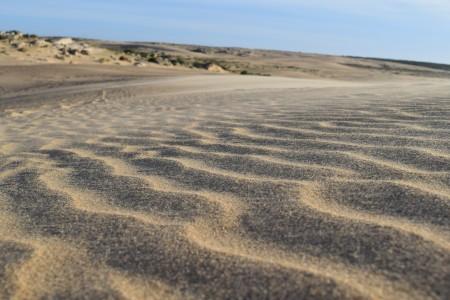 OGD Rocha realizará mensualmente jornadas de limpieza en playas, lagunas y entornos naturales del departamento. ¡Súmate!