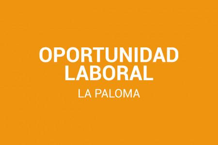 ¡Oportunidad laboral! Naranja Lima Restó en La Paloma busca personal para cocina