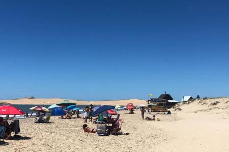 ¿Cuál fue el perfil del turista que visitó las costas de Rocha durante enero 2021?