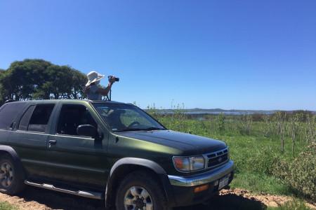 Rocha se suma al circuito regional de observadores de aves, generando alianzas entre operadores turísticos