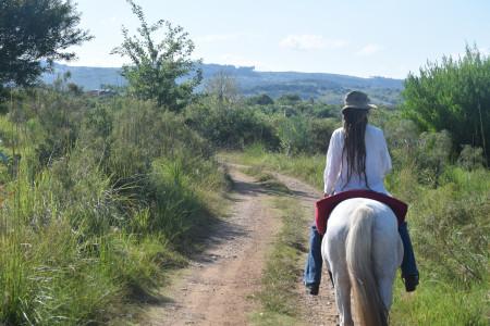 """""""Tenemos un desafío: visibilizar el rol de la mujer en la actividad turística"""". Reflexión de la CRT en el Día de la Mujer"""