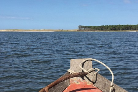 Paseos en bote por la Laguna de Rocha: Pepe Lobato