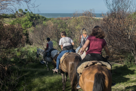 Horseback riding Punta del Diablo, visit fields, beaches and forests of Rocha on horseback
