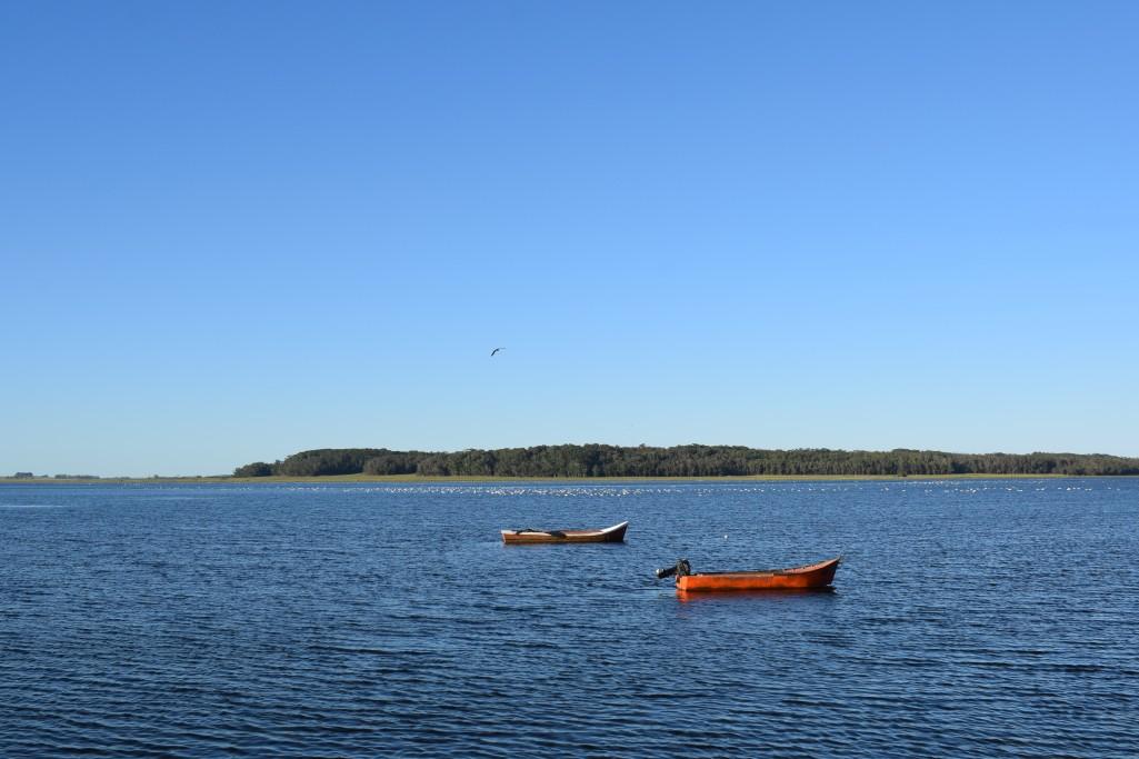 Tour guiado a la Laguna de Rocha