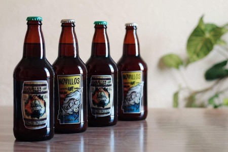 Novillos: craft beer from Rocha, Uruguay
