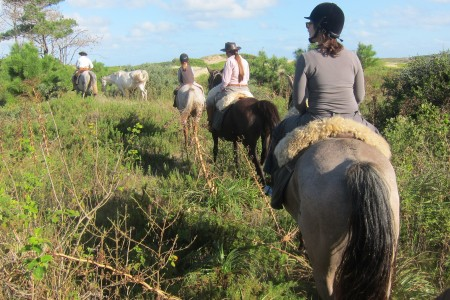 Caballos del Este, horseback riding and rides in Rocha