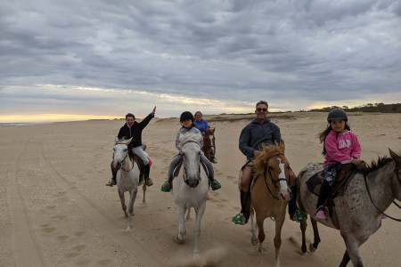 Eco Equus: horseback riding through the ocean and fields, deserted coasts, wetlands and bird watching in Uruguay