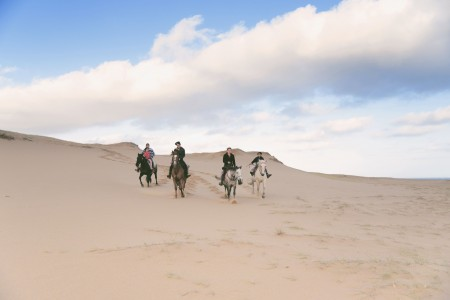 Eco Equus: horseback riding on the beach, forests, hills, fields and fascinating environments of Rocha