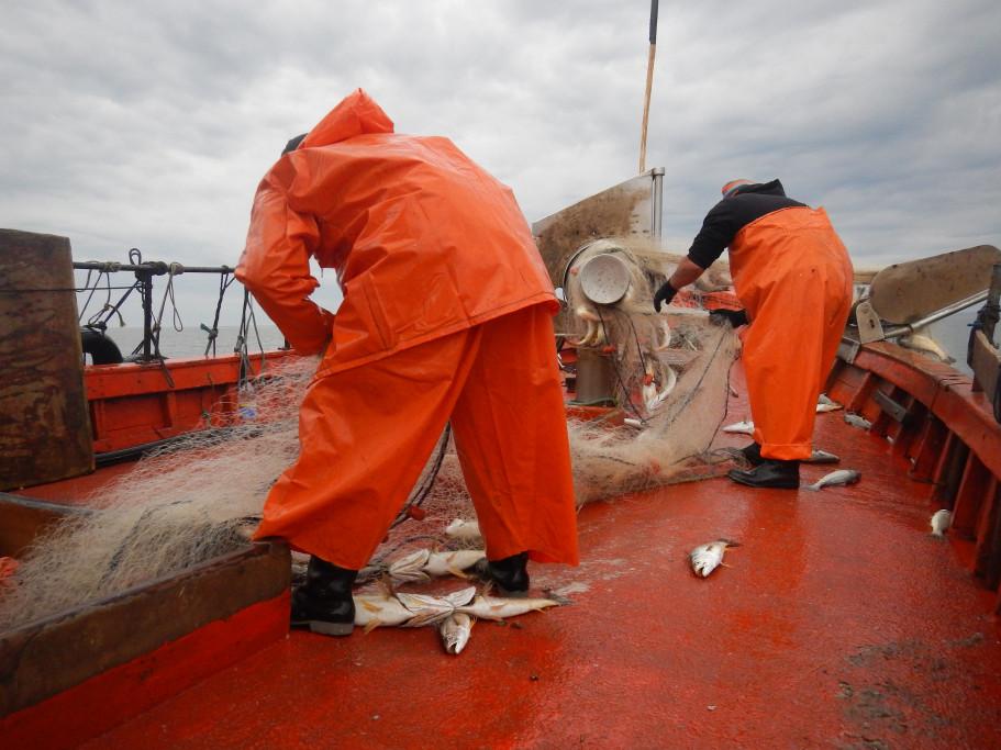 Pesca de pescadilla de calada en Uruguay