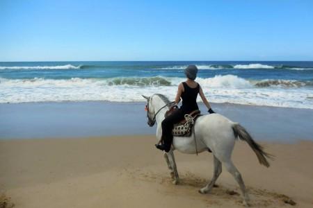 Cabalgata de playa y campo con Cabalgatas La Pedrera