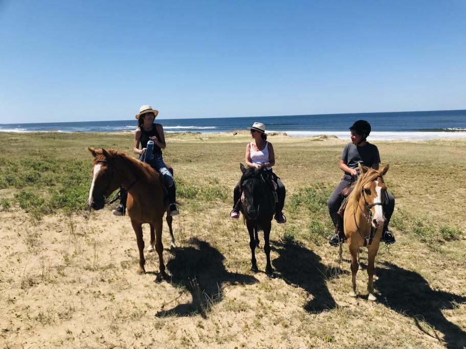 Cabalgatas por playas de Rocha