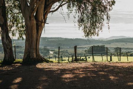 Día de campo en las Sierras de Rocha, con caminata, almuerzo y recorrido por un tambo