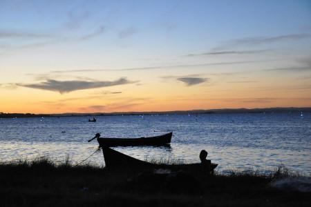 A la orilla del ceviche. Disfruta de un ceviche de pescado fresco de la Laguna de Rocha