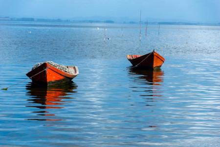 Recorriendo la tradición pesquera de la Laguna de Rocha: paseo en bote y degustación de sabores artesanales