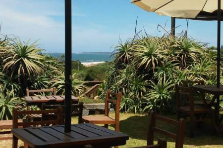 Descanso y playa en La Pedrera con paseo y almuerzo en la Laguna de Rocha