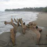 Calovebora beach
