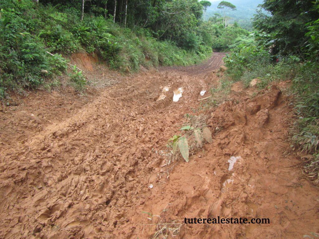 mud road rio luis