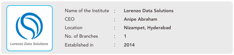 Institute of the Month - Lorenzo Data Solutions
