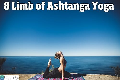 https://s3.amazonaws.com/tv-wordpress/a/wp-content/uploads/8-Limb-Ashtanga-Yoga.jpg