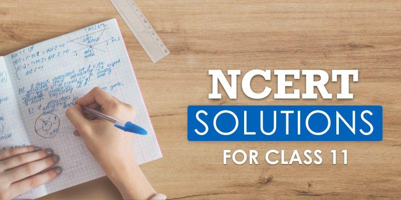 NCERT Class 11 Solutions – 1