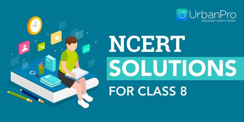 NCERT Class 8 Solutions – 1