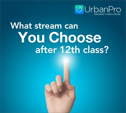 What stream can you choose after 12th class