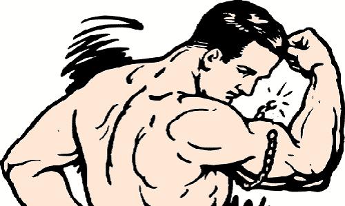 https://s3.amazonaws.com/tv-wordpress/a/wp-content/uploads/muscles-2026322_960_720.png