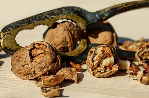 walnut is a good food
