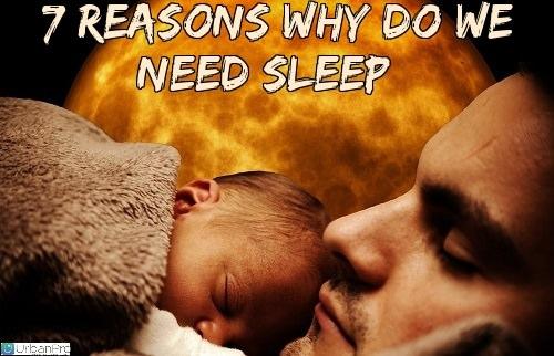 7 Reasons Why do we need Need Sleep