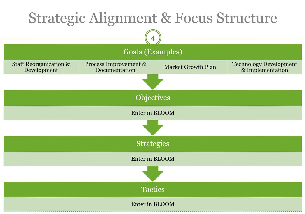 Strategic Growth Plan Development Template BLOOM – Growth Plan Template