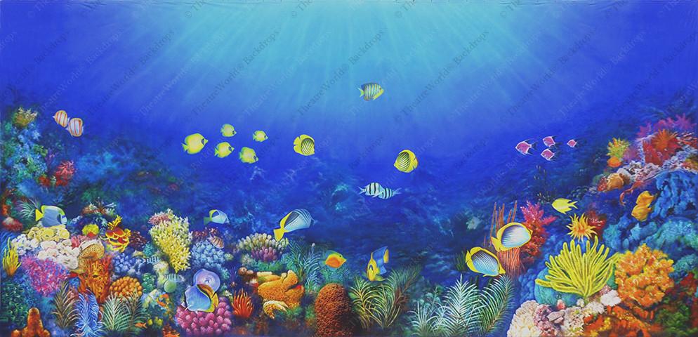 Coral Kingdom - B