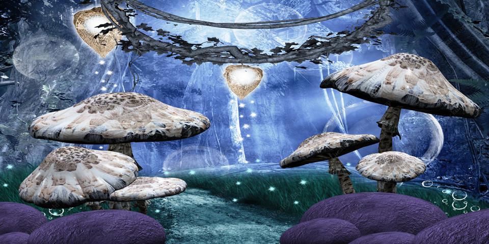 Enchanted Mushroom Path