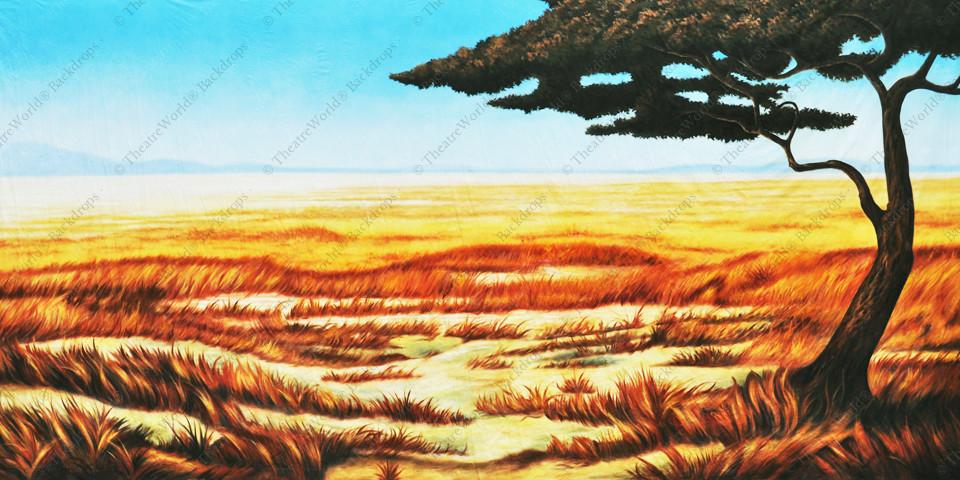Tranquil Grasslands